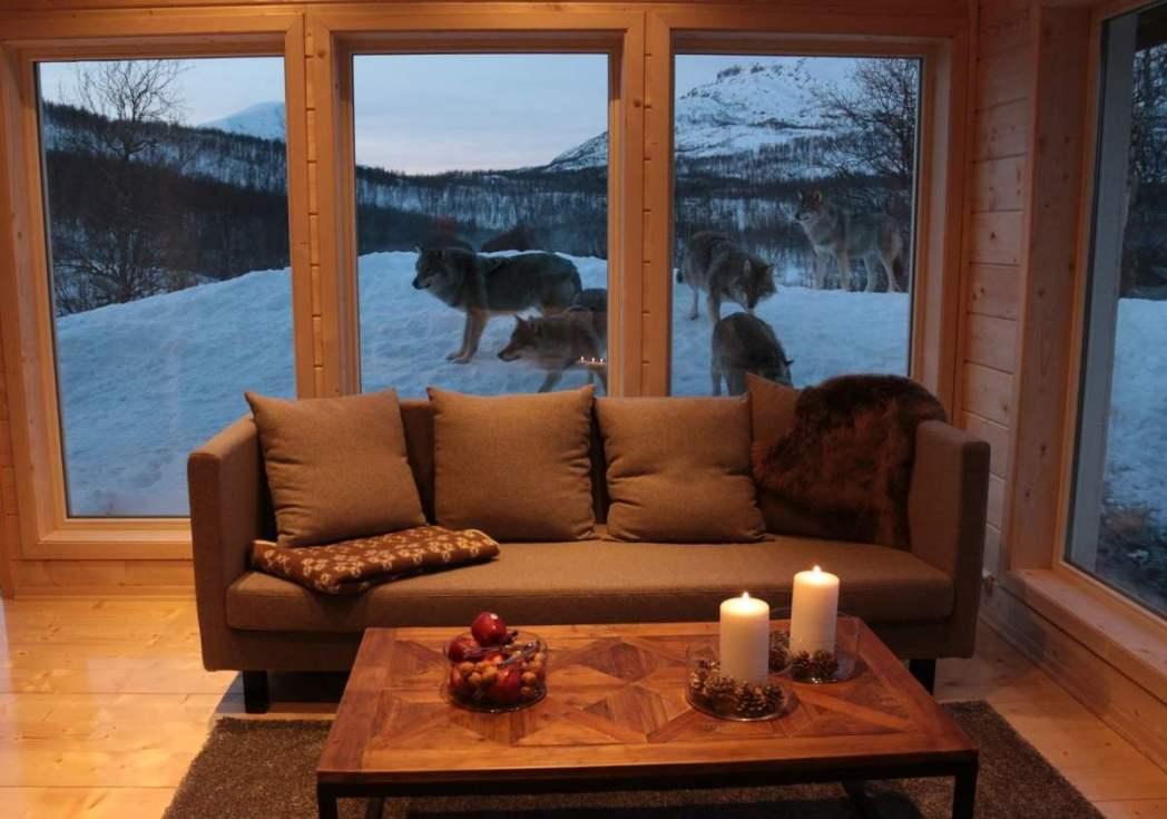 Wolf Lodge